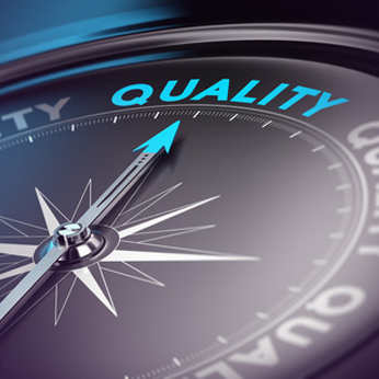 Data Quality & Master Data Services